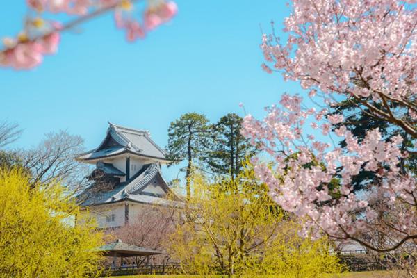 石川県で婚活