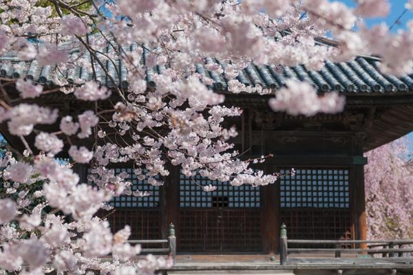 和歌山、道成寺